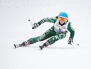 Johansson Ski
