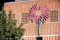 A red Protea flower on the outside of the Loftus Versfeld Stadium in Tshwane / Pretoria, South Africa. Venue for the FIFA Confederations Cup South Africa 2009 and the 2010 FIFA World Cup in South Africa. The stadium was named after Robert Owen Loftus Versfeld, the founder of organized sports in Pretoria.