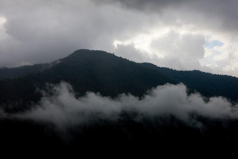 A view of the Arfak Mountains in the fog near Mokwam, Papua, Indonesia, Sept. 11, 2008..Daniel Beltra/Greenpeace