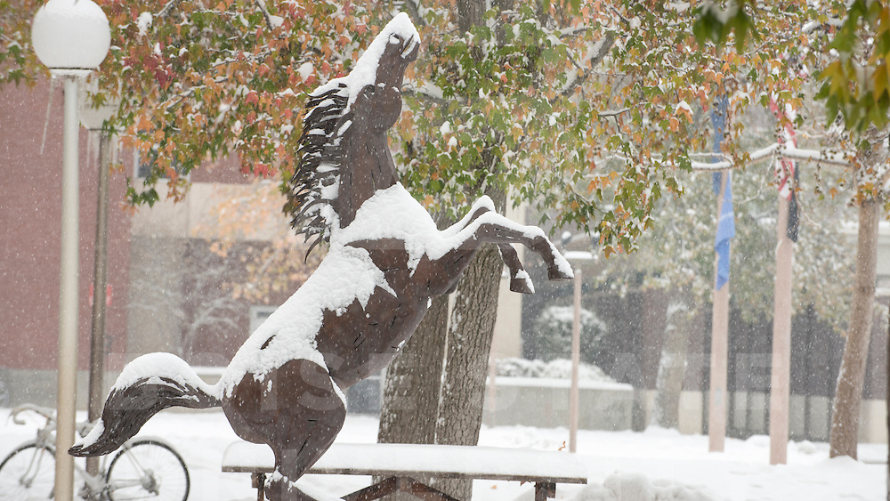 Winter Campus Scenes, B Plaza, Bronco, Carrie Quinney photo
