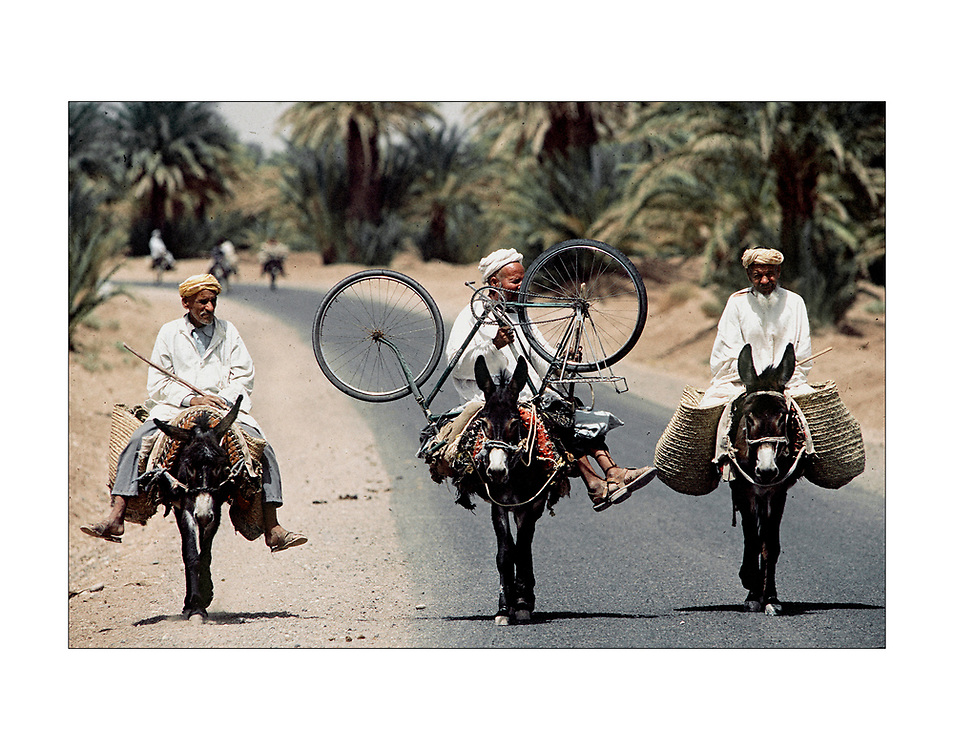 Three men, three donkeys and a bicycle on a road skirting the Sahara Desert in southern Morocco.&copy;Ed Hille / Picturedesk.net<br /> ONE TIME USE ONLY