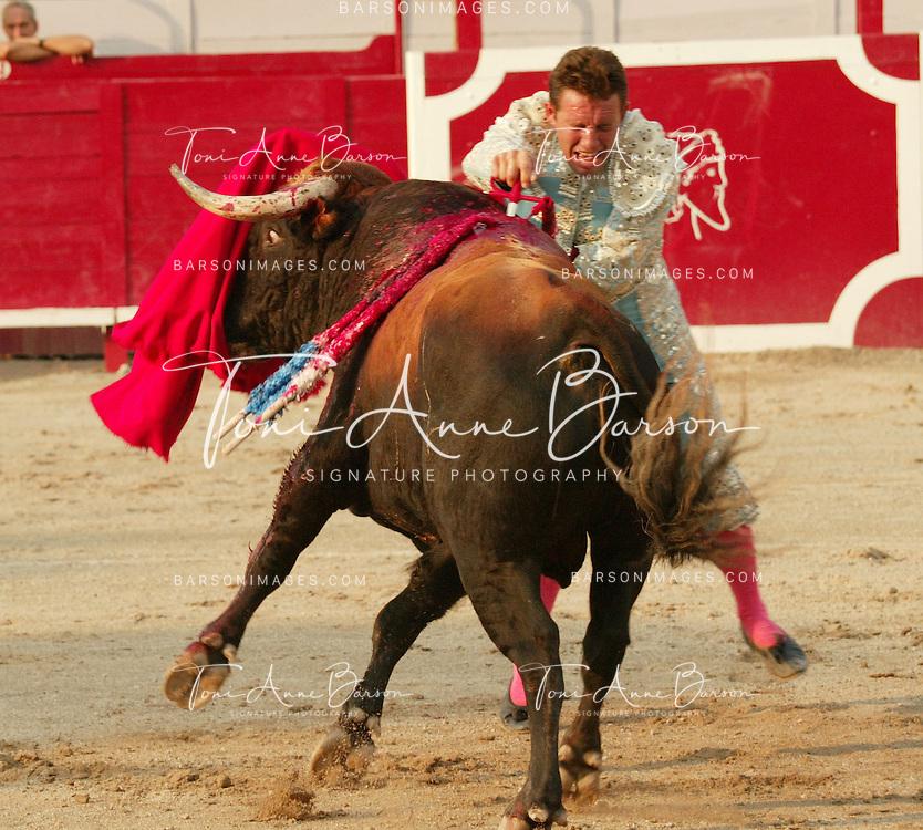 Bullfighter Fernandez Meca