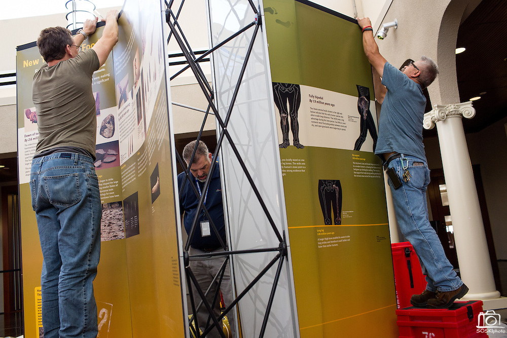 Circulation Supervisor of Milpitas Robert Bright, left, Milpitas Librarian Stephen Fitzgerald, center, and Maintenance Mechanic Gary Ponce, right, set up the Smithsonian Institution's traveling Exploring Human Origins exhibit at the Milpitas Library in Milpitas, California, on November 24, 2015. (Stan Olszewski/SOSKIphoto)