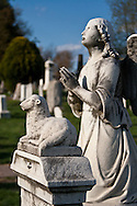 An angel prays at the Congressional Cemetery.