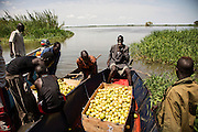 A Nile River fishing camp in Terekeka, South Sudan. Offloading guavas.