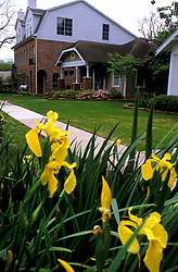 Stock photo of a house with yellow flowers in the lawn