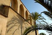 Spanien Spain,Mallorca Balearen..Alcudia..Kirche Sant Jaume, Palme..church Sant Jaume, palm tree....