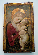 The Virgin and Child around 1455 after Desiderio da Settignano (1430-64).  This popular composition was made in several stucco versions.  The one shown here was possibly cast from a marble now in the Pinacoteca Sabauda, Turin.