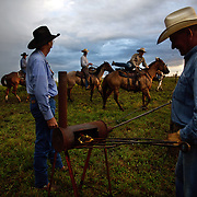 Alan Katko prepares a branding iron as the sun rises at the Bar B ranch near Albia, Iowa.  Calves were roped and seperated from the herd for vaccinations, branding and the placement of growth stimulant implants.  The male calves were also castrated.  Owner Catherine Bay runs the operation with a herd of over 2,000 cattle.