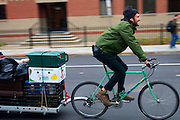 November 3, 2010 - Parker Gorick rides a bike, with a trailer of food and supplies attached, from a house in Cambridge to Central Square on Sunday for a Food Not Bombs meal. Food Not Bombs advocates for social change by providing free vegan meals for those who want to eat. Photo by Lathan Gouma.