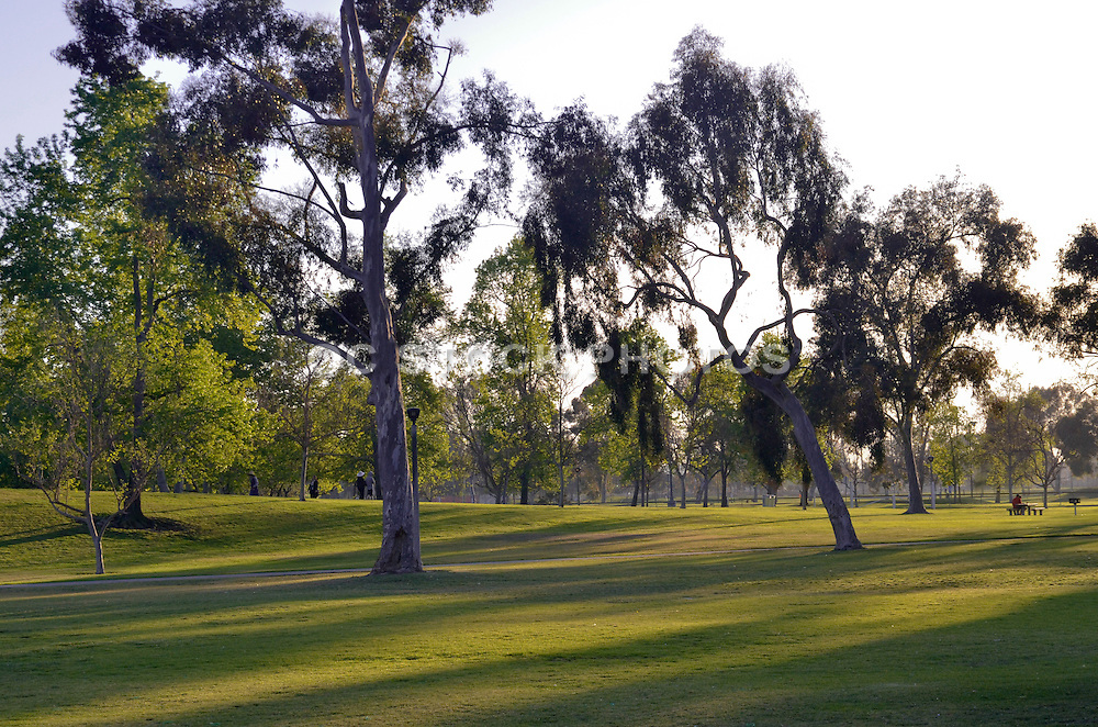 Mile Square Regional Park in Fountain Valley