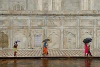 The Taj Mahal on a rainy day, Agra, India.