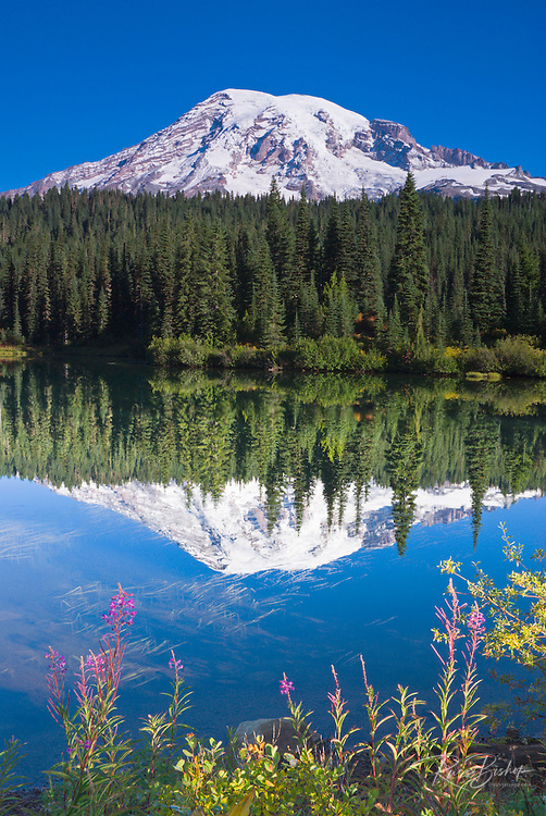 Wildflowers and Mount Rainier from Reflection Lake, Mount Rainier National Park, Washington