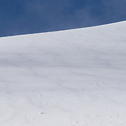 Blue skies greeted 22 teams from across the Western United States. The venue on Cody Peak provided soft powder, though a bit wind-slabby in spots. The Marmot sponsor flag atop the Powder 8 Face ridge.