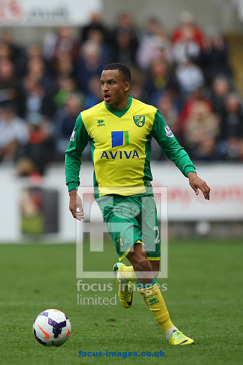 Martin Olssen of Norwich in action during the Barclays Premier League match at the Liberty Stadium, Swansea<br /> Picture by Paul Chesterton/Focus Images Ltd +44 7904 640267<br /> 29/03/2014