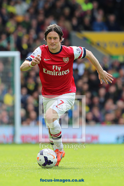 Tomas Rosicky of Arsenal during the Barclays Premier League match at Carrow Road, Norwich<br /> Picture by Richard Calver/Focus Images Ltd +447792 981244<br /> 11/05/2014