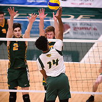 2nd year middle blocker Conal McAinsh (2) of the Regina Cougars in action during Men's Volleyball home game on November 3 at Centre for Kinesiology, Health and Sport. Credit: Casey Marshall/Arthur Images