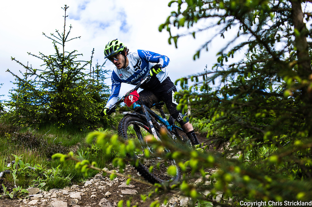 Glentress, Peebles, Scotland, UK. 31st May 2015. BARELLI<br /> Yoann Barelli in action on Stage 8 at The Enduro World Series Round 3 taking place on the iconic 7Stanes trails during Tweedlove Festival. Mountain bikers came up against eight stages across two days, with an intense 2,695 metres of climbing over 93km. As well as the physicality of the liaisons, the stages themselves are technical, catching many off guard.