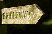 Wooden bridleway sign pointing direction