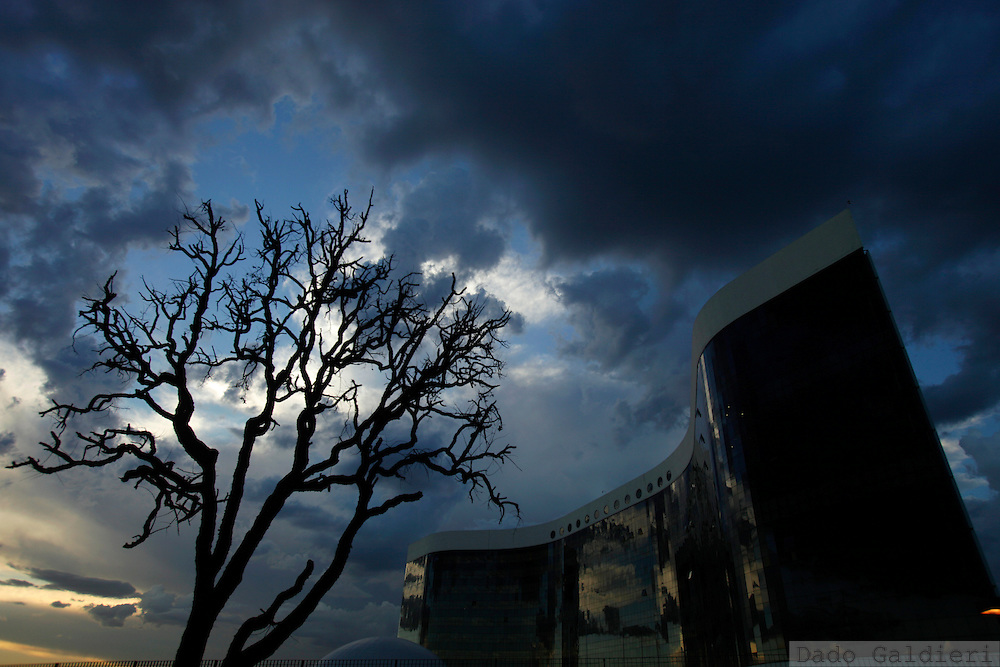 A dry tree spreads its branches in front of the new building that hosts the country Electoral Court in Brasilia, Brazil, Wednesday, Feb 8, 2012.(Photo Dado Galdieri)