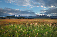 Stanley Basin meadows. Sawtooth Mountains Idaho