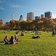 Sheep Meadow, Central Park, November 2010