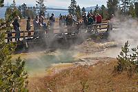 Visitors enjoy Ranger lead tours at West Thumb Geyser Basin.  Yellowstong National Park, Wyoming, USA.