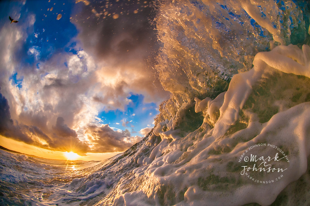 Wave breaking off the coast of N. Stradbroke Island, Queensland, Australia at sunset (can you find the bird)?