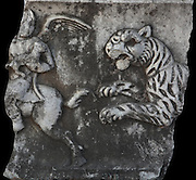 Stone relief of a hunting scene with a mythological winged centaur creature holding a baby animal being chased by a wild animal, possibly a lion or tiger, in the Miletus Museum, Miletus, Aydin, Turkey. Miletus was an Ancient Greek city on the Western coast of Anatolia. Although settlement began here millennia ago, its heyday was in the Hellenistic and Roman periods. The city was finally abandoned in the Ottoman era when the harbours silted up. Picture by Manuel Cohen