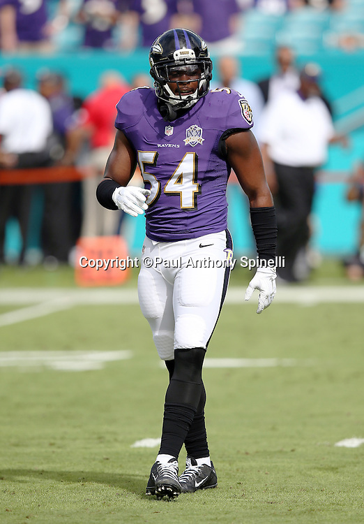 Baltimore Ravens linebacker Zach Orr (54) looks on during the 2015 week 13 regular season NFL football game against the Miami Dolphins on Sunday, Dec. 6, 2015 in Miami Gardens, Fla. The Dolphins won the game 15-13. (©Paul Anthony Spinelli)