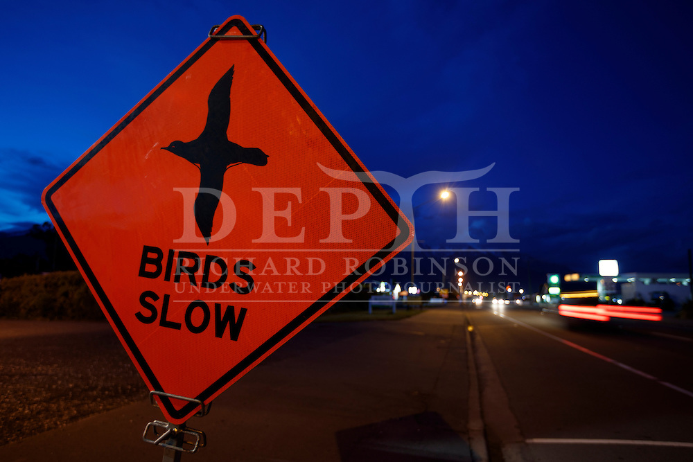 Road signs to urge motorists to slow down where Hutton&rsquo;s shearwater (Puffinus huttoni)  fledglings  crash land around the Kaikoura township in New Zealand due to light disorientation.  <br /> Sunday 02 October 2016<br /> Photograph Richard Robinson &copy; 2016