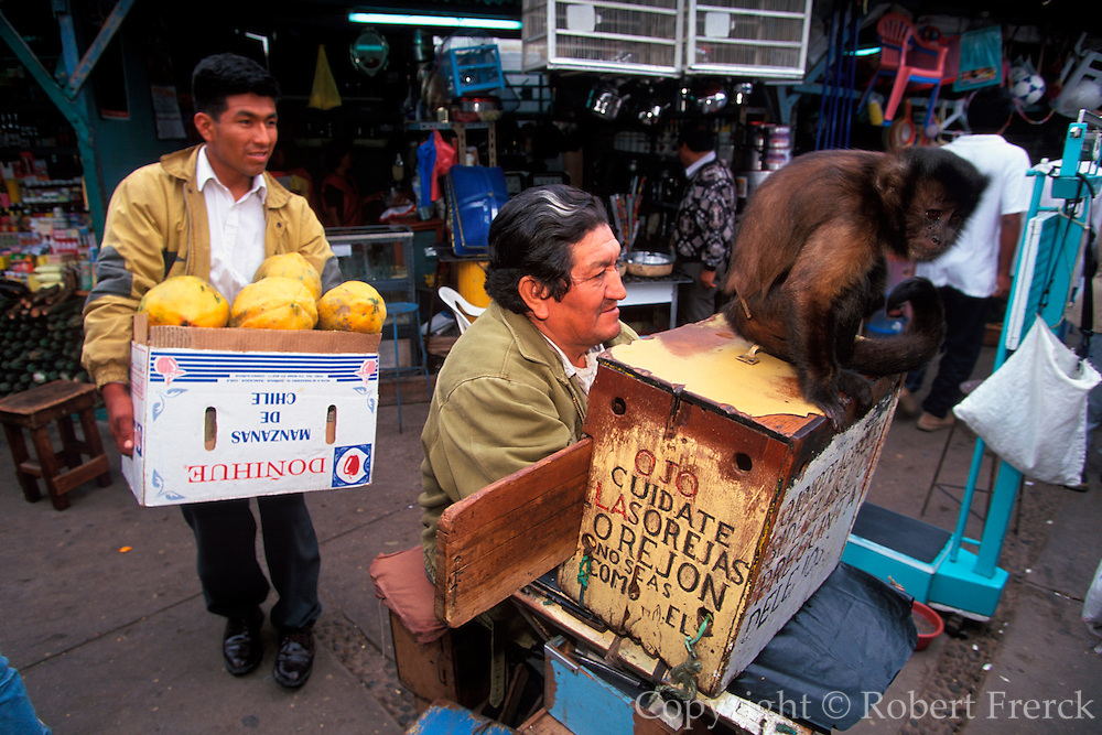 PERU, CHICLAYO Mercado de Brujos, pet monkey
