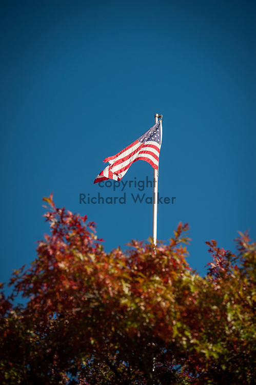 2016 October 11 - United States flag on a pole in the University District, Seattle, WA, USA. By Richard Walker