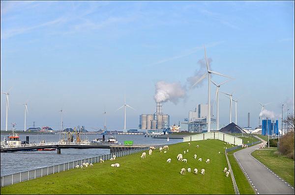 Nederland, Groningen, 15-4-2015Lente in de provincie Groningen. Schapen en lammetjes, lammeren, grazen op de groene dijken rond de eemshaven. In dit havengebied, industriegebied, staan veel bedrijven die met energieproductie te maken hebben, zoals RWE met een kolencentrale, waar de rook uit de schoorsteen komt, Electrabel met de Eemscentrale en Nuon, Vattenfall. Ook ruim 90 windmolens wekken groene stroom op. Windenergie,windmolenpark.FOTO: FLIP FRANSSEN/ HOLLANDSE HOOGTE
