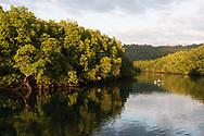 Koh Kood Ko Kut island mangroves & beaches in Trat province Thailand