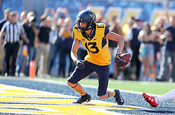 Oct 14, 2017; Morgantown, WV, USA; West Virginia Mountaineers wide receiver David Sills V (13) catches a pass for a touchdown during the fourth quarter against the Texas Tech Red Raiders at Milan Puskar Stadium. Mandatory Credit: Ben Queen-USA TODAY Sports