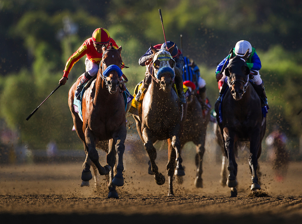 Secret Circle, ridden by Martin Garcia wins the Breeders' Cup Sprint on November 2, 2013 at Santa Anita Park in Arcadia, California during the 30th running of the Breeders' Cup.(Alex Evers/ Eclipse Sportswire)