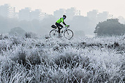 UNITED KINGDOM, London: 08 November 2016. A cyclist braves the frost this morning as he makes his way through Richmond Park. Rick Findler / Story Picture Agency
