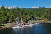 Sailboats docked in cove near Sechelt<br /> Smuggler Cove Marine Provincial Park<br /> British Columbia<br /> Canada