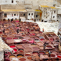 Leather Tannery in Fes el Bali at Fez, Morocco<br /> The noxious stench of the Chouara tannery is bad. Yet it is nothing compared to watching the barbaric process of creating leather. The animal skins are first dried in the blistering, North African heat on roofs and balconies. Then they are bathed in pigeon excrement and animal urine.  Next stop is to a honeycomb of stone vessels.  Workers stand in the colored vegetable dye while soaking the hides along with their own arms, waist and legs.  OSHA would not approve of the practices at the Tanners&rsquo; Quarter. However, the resulting leather goods are magnificent.