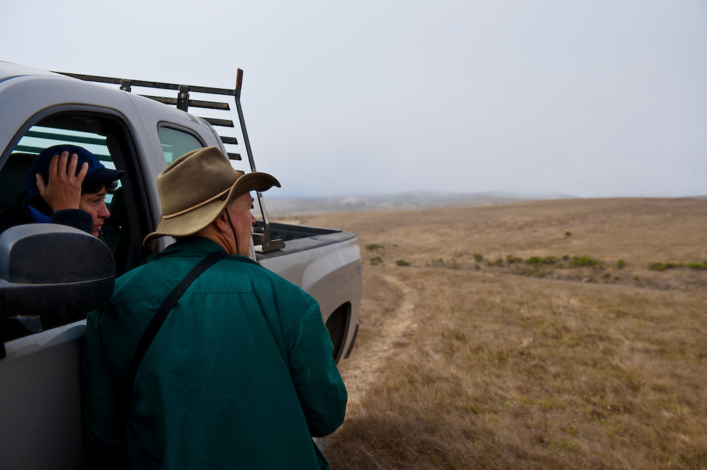 Kathryn McEachern with her husband Edward ?Tre? Demmond shoot historic photo points and monitor fog drip points to help chart the re-growth of vegetation native to Santa Rosa Island, California, on Aug. 6, 2012.  Their two sons, Connell and Carson, accompany them as well as National Park Service botanist Sarah Chaney.   The Channel Islands were subject to sheep and cattle ranching during the 1900's, an era that has left the landscape bereft of native plants and grasses.  McEachern works for the USGS and National Park Service to help restore these islands to a more natural state.  (Photo by Aaron Schmidt © 2012)