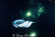 manta ray, Mobula alfredi, formerly Manta birostris, feeding at night on plankton attracted by the lights of a dive boat, the Kona Agressor II, Kona, Big Island, Hawaii ( Central Pacific Ocean )