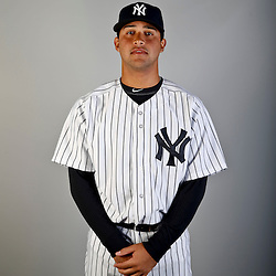 Feb 20, 2013; Tampa, FL, USA; New York Yankees Francisco Arcia (87) during photo day at Steinbrenner Field. Mandatory Credit: Derick E. Hingle-USA TODAY Sports