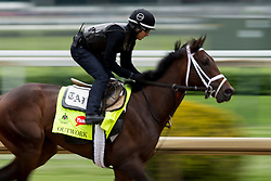 Derby 142 hopeful Outwork with Hector Ramos up were on the track for training, Tuesday, May 03, 2016 at Churchill Downs in Louisville.