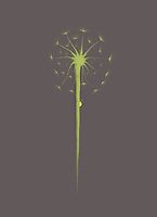 Beautiful dandelion seeds with a little lady bug climbing the stem. Minimalistic abstract oriental Zen style sumi-e painting based design illustration. Light green on gray background.