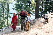 Ganderbal district trek to Harmukh mountain and Lake Gangabal, Kashmir Valley, Northern India 2009-07-12.<br />