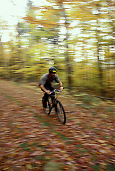 Mountain Biking on an old logging road near Loon Mountain in Lincoln.  Fall.  White Mountain N.F., NH