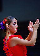 Flamenco dancer, Alcazar Palace, Seville, Spain