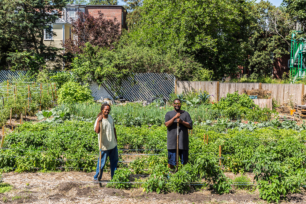 Bobby Walker and Chris Mables of the Urban Farming Institute of Boston work at the Garrison-Trotter Farm in the Dorchester neighborhood of Boston, Massachusetts.