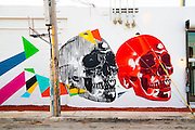 Skulls on a Wynwood mural